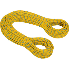 Mammut 8.0 Phoenix Dry Rope 10 mm, 70 m, yellow